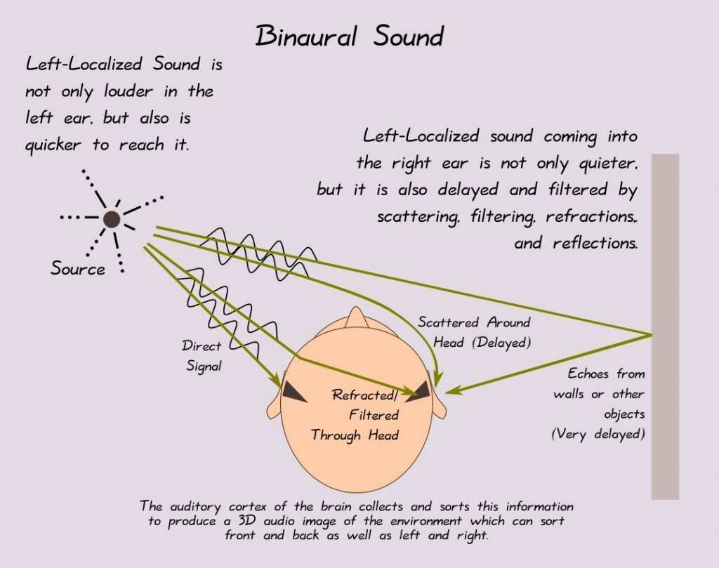 Binaural sound localization